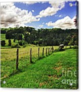 The Green Green Grass Of Home Acrylic Print