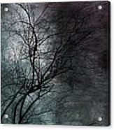 The Haze Of The Moon Acrylic Print