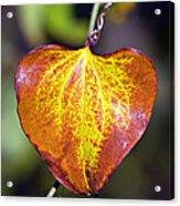 The Heart Of Autumn Acrylic Print