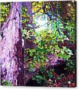 The Hope Of New Life Acrylic Print