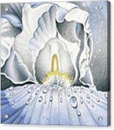 The Iris Universe Acrylic Print by Elizabeth Dobbs