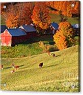The Jenne Farm Acrylic Print