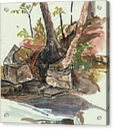 The Jessup Indian Lake Ny Acrylic Print by Ethel Vrana