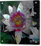 The Light From Within Acrylic Print by Cheri Doyle