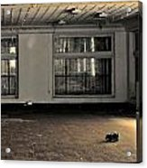 The Lone Toy Acrylic Print