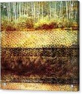 The Losses Reflected Acrylic Print