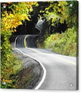 The Low Road Acrylic Print