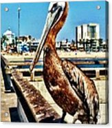 The Mayor Of Venice Pier Acrylic Print