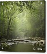 The Middle Prong River In Fog Acrylic Print