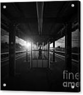 The Middle Acrylic Print