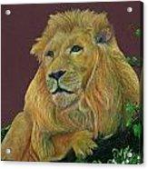 The Mighty King Acrylic Print