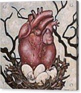 The Nest Of My Heart Acrylic Print