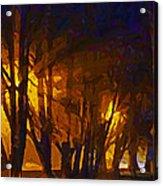 The Night Lights Acrylic Print