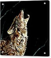 The Night Of The Wolf Acrylic Print