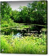The Ole Fishing Hole Acrylic Print