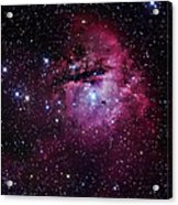 The Pacman Nebula Acrylic Print by Robert Gendler