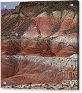 The Painted Desert  8018 Acrylic Print