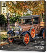 The Painted Lady's Gent Acrylic Print