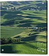 The Palouse 1 Acrylic Print