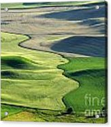 The Palouse 2 Acrylic Print