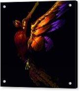 The Phoenix Rising... Acrylic Print