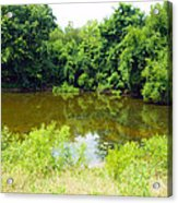 The Pond View Acrylic Print