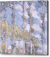 The Poplars Acrylic Print by Claude Monet