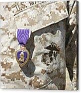 The Purple Heart Award Hangs Acrylic Print by Stocktrek Images