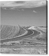 The Quiet Road Acrylic Print