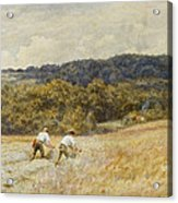 The Reapers Acrylic Print by Helen Allingham