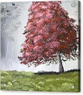 The Red Tree Acrylic Print