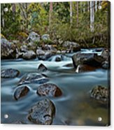 The River Wild Acrylic Print