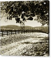 The Road Home -2 Acrylic Print