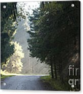 The Road Out Of The Conservation Area Acrylic Print