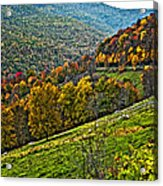 The Road To Glady Wv Painted Acrylic Print