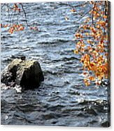 The Rockness Monster Acrylic Print
