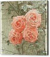 The Rose 2 Acrylic Print