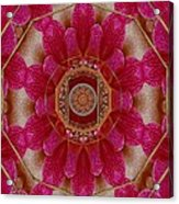 The Sacred Orchid Mandala Acrylic Print