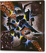 The Shadow Stone Acrylic Print