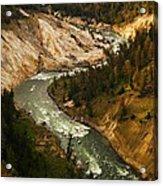 The Snaking Yellowstone Acrylic Print