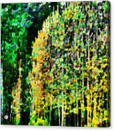 The Speckled Trees Acrylic Print