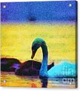 The Swan Family Acrylic Print