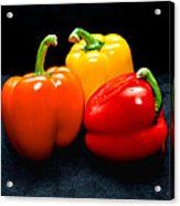 The Three Peppers Acrylic Print