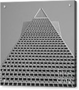 The Tip Of San Francisco  Acrylic Print