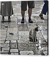 The Tourists Acrylic Print