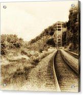 The Tracks Of My Tears Acrylic Print