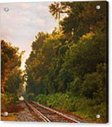 The Tracks Acrylic Print