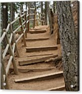 The Trail To The Top Acrylic Print