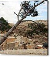 The Tree In Desert Acrylic Print