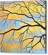 The Tree Of Dreams Acrylic Print